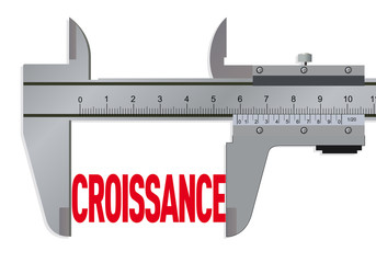VERNIER_Croissance