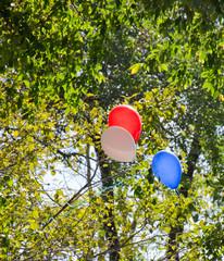 шарики на дереве