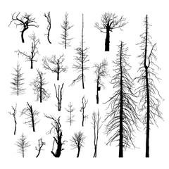 Set of dead trees