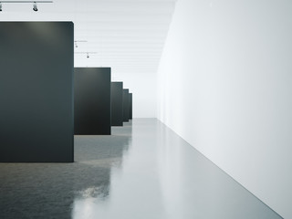 Open space interior with black canvas. 3d render