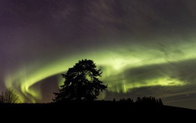 Northen lights over southern Finland