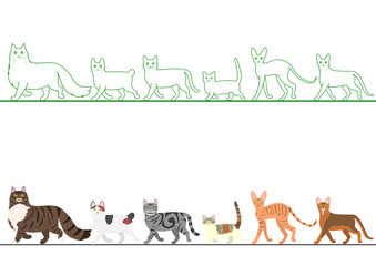 set of various cats walking in line