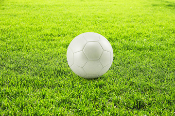 Green grass with white soccer ball
