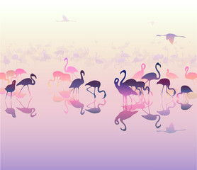 landscape with silhouettes of flamingo