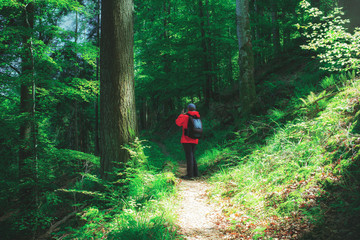 Man wearing red raincoat walking on a path in mountain forest taking a photo. Vintage effect.