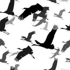 seamless texture with silhouettes of flying cranes. black-white