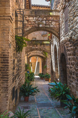 Transitions and abbreviations under the arches in the Italian me