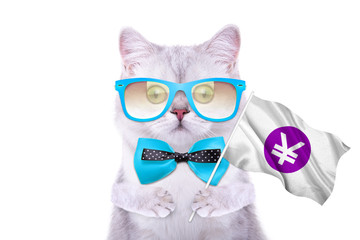 Smart beautiful british cat with a yuan icon. Funny animals. Trendy cat dressed in beautiful clothes
