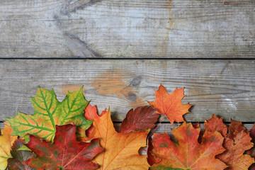 Herbstliches2