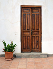 Old wooden door and plant in flower pot.