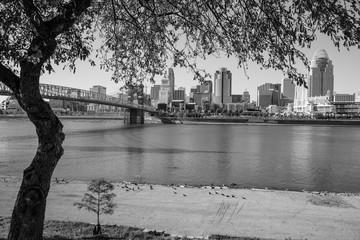 Cincinnati Black and White 3