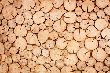 timber wood texture surface