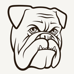 Bulldog 004