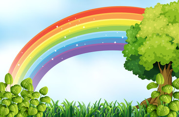 Nature scene with rainbow