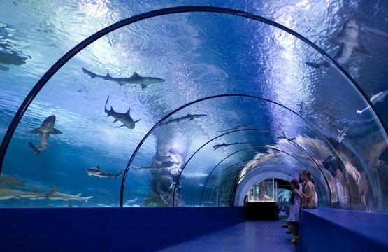 Children in a water tunnel