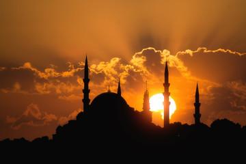 Suleymaniye Mosque,Istanbul Wall mural