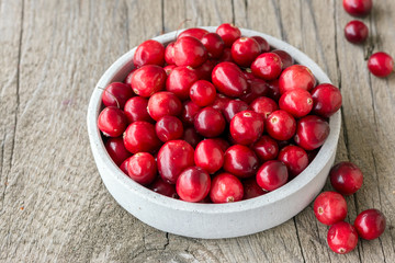 Schale mit Cranberrys