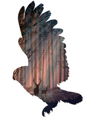 Wall Mural - owl
