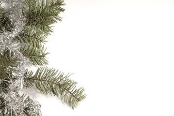 Pine Tree Frame