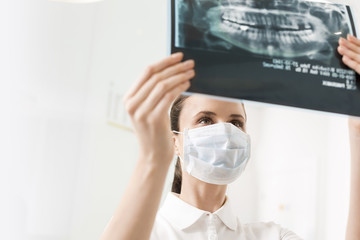 Doctor looking at x-ray image of teeth