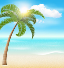 Beach with Palm and Clouds. Summer Vacation Holiday Background