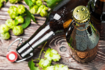 beer bottles and hop on wooden table