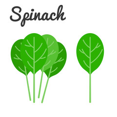 Vector Spinach