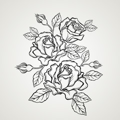Hand drawn rose flower in vintage style.