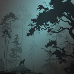 foggy landscape with silhouette of forest, pine trees and wolf, moonlight