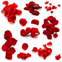Set of rose petals