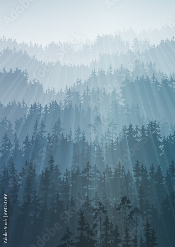 Wall mural forest