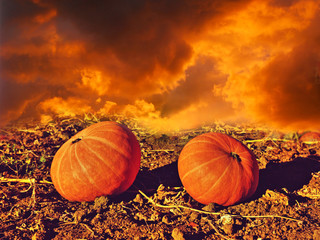 Spooky image of two pumpkins on a background of fire and smoke (