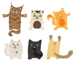 set of cheerful kittens