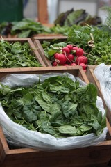 Fresh veggies at farmer's market