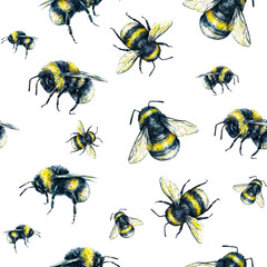 Bumblebee on a white background. Watercolor drawing. Insects art. Handwork. Seamless pattern