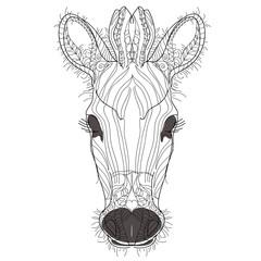 Sketch, doodle, hand drawn illustration of zebra.