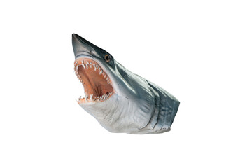 shark head model isolated on white background  with clipping pat