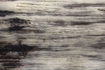 Driftwood Texture Background
