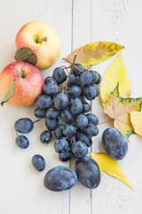 Ripe Autumn Apples,Grapes and Plums Assortment