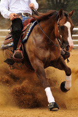 A front view of a rider and horse sliding in the dust.