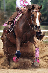 The close-up view of a rider sliding a horse in the sand.