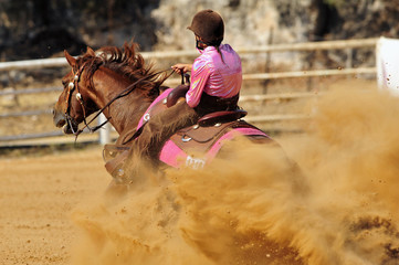 The rear view of a rider stopping a horse in the sand.