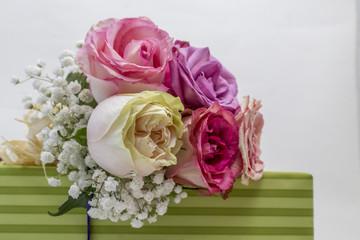Colorful roses decoration, closeup shot