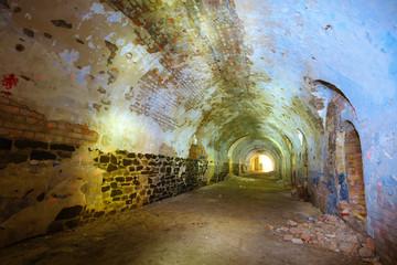 ukraine, tarakanov fortress ruin