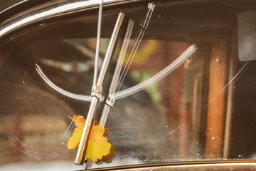 Autumn leaf behind a screen wiper