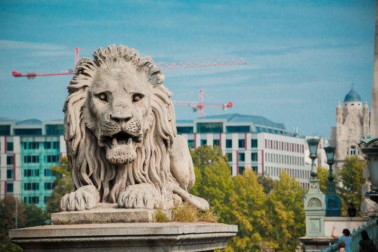 Lion statue at the Chain bridge, Budapest, Hungary