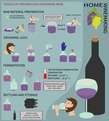 Home winemaking. Wine from grapes. Infographics.