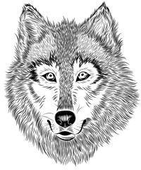 Wall Murals Hand drawn Sketch of animals black and white graphic wolf portrait