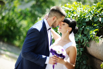 bride and groom kissing on the background of greenery