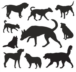 Dog  Silhouettes vector set